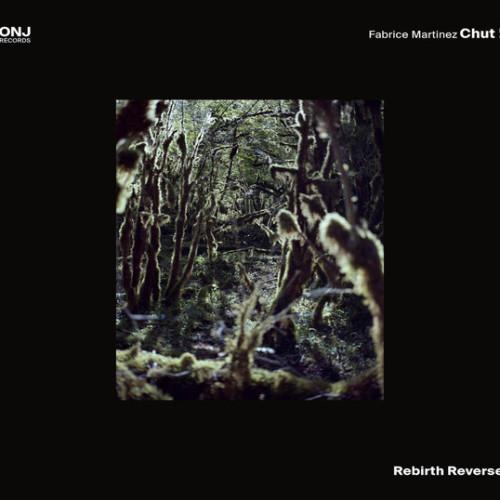 Fabrice Martinez Chut!-rebirth-reverse